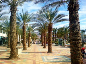 Eilat (1)