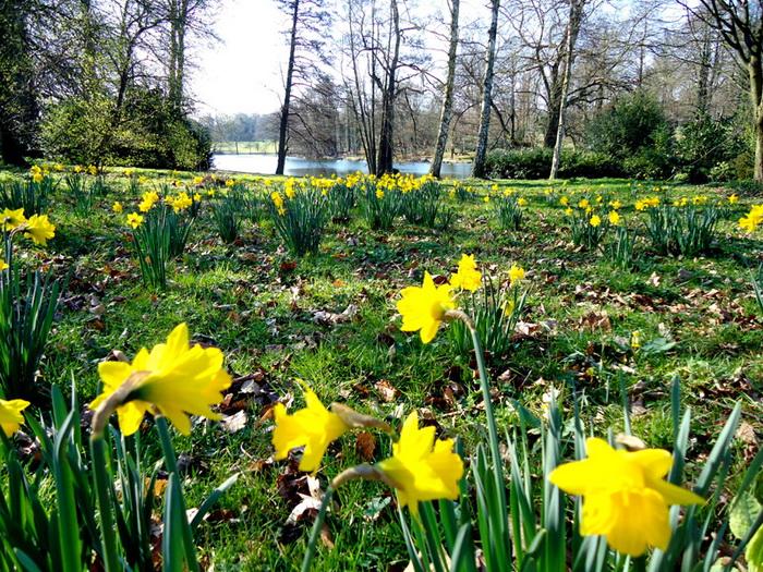 Beautiful English Natural Gardens Designed By Man