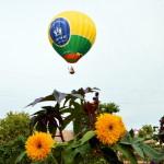 Theodosia ballooning (29)