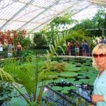 Kew garden (11)