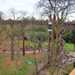 Kew garden (19)