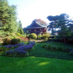 Kew garden (4)