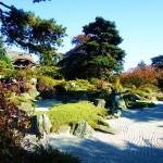 Kew garden (5)