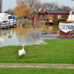 flood in England (1)