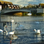 flood in England (21)