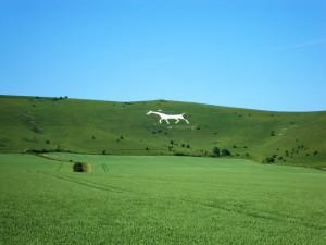 Alton Horse