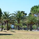 Argeles-sur-Mer 1