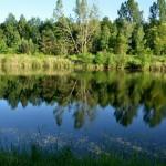 The Belarusian Polesia