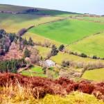 North Devon (1)