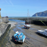Lynmouth, the most delightful place for the landscape painter