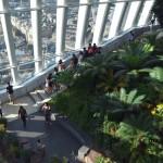 Sky Garden (10)