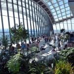Sky Garden (2)